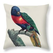 Perruche A Tete Bleue, Male / Rainbow Lorikeet, Male - Restored 19th Cent. Illustration By Barraband Throw Pillow