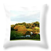 Perry Reflection Photo Throw Pillow