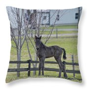 Perry's Coat Standing Throw Pillow