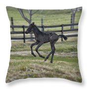 Perry's Colt Running Throw Pillow