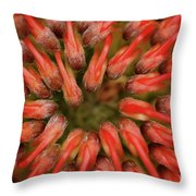 Perseverance Throw Pillow by Stephen Mitchell