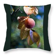 Persimmon Tree Throw Pillow