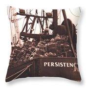 Persistence Throw Pillow