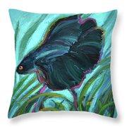 Persistent Fish Betta  Throw Pillow