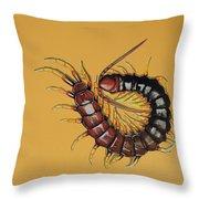 Peruvian Centipede Painting By Jude Labuszewski