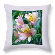 Peruvian Lily Of The Incas Throw Pillow