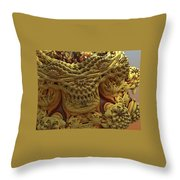 Peruvian Weave Throw Pillow
