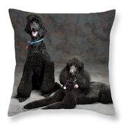 Pet Partners #346 Throw Pillow