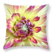 Petal Burst Throw Pillow