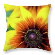 Petal Palette Throw Pillow