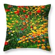Poppy Petal Patch Throw Pillow