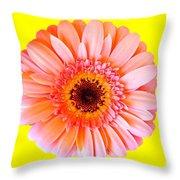 Petal Pop Designs Throw Pillow