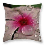 Petal Surfing Throw Pillow