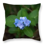 Petals And Thorns Throw Pillow