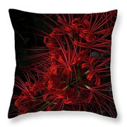 Petals Of Fireworks Throw Pillow