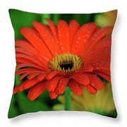 Petals With Droplets Throw Pillow