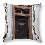 Peter Ohlig Door Rudesheim Throw Pillow