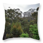 Peters Canyon In The Rain 8 Throw Pillow