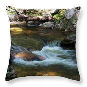 Peters Kill On A May Morning Throw Pillow