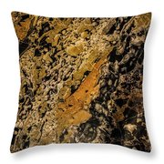 Peter's Marble Throw Pillow