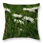 Petite Daisies 5 Throw Pillow