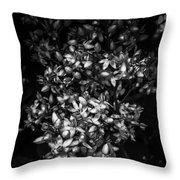 Petite Noir Petals Throw Pillow