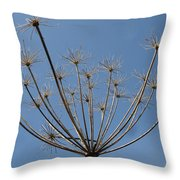 Petite Parasols Throw Pillow