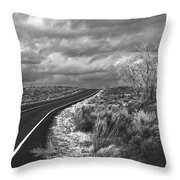 Petrified Forest 6 Throw Pillow