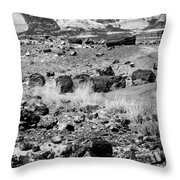 Petrified Forest National Park #2 Throw Pillow