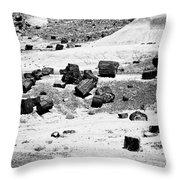 Petrified Forest National Park #3 Throw Pillow