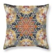 Petrified Snowflake Throw Pillow