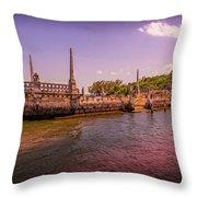 Petrified Sunset Throw Pillow