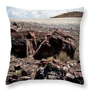 Petrified Wood #2 Throw Pillow