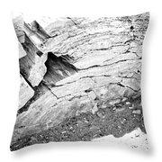 Petrified Wood #5 Throw Pillow