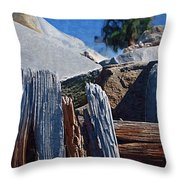Petrified Wood Throw Pillow