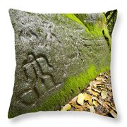 Petroglyphs At An Archaeological Site Throw Pillow