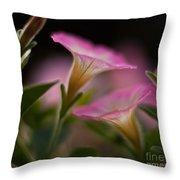 Petunia Joining Throw Pillow