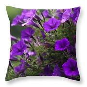 Petunias 2 Throw Pillow