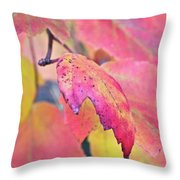 A Sign Of Fall Throw Pillow
