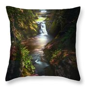 Pewitts Nest Throw Pillow