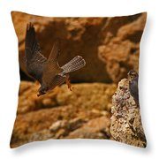 Off To Find More Food Throw Pillow