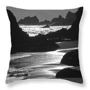 Pfeiffer Beach Sp 8192 Throw Pillow