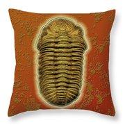 Phacops Rana Crassituberculata  Throw Pillow