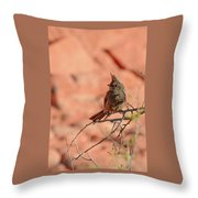 Phainopepla Throw Pillow