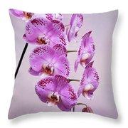 Phalaenopsis Lianher Happy Dancer Throw Pillow