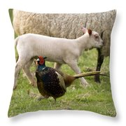 Pheasant And Lamb Throw Pillow
