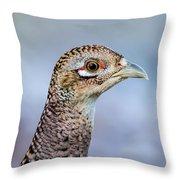 Pheasant Hen Throw Pillow
