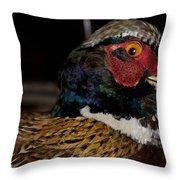 Pheasant In The Eye Throw Pillow