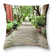 Philadelphia Alley Charleston Pathway Throw Pillow