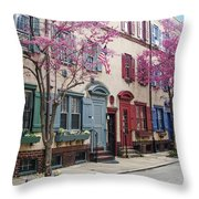 Philadelphia Blossoming In The Spring Throw Pillow